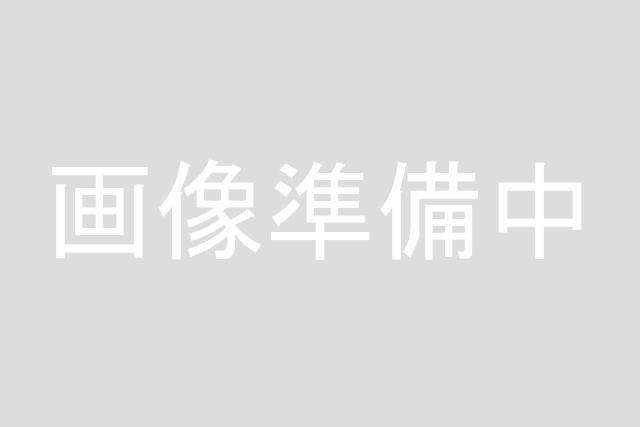 ドラッグストアイチワタ 秩父永田店